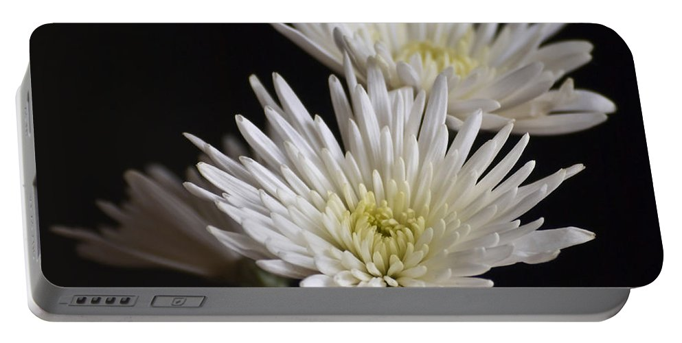 Flowers Portable Battery Charger featuring the photograph Chrysanthemums by Svetlana Sewell