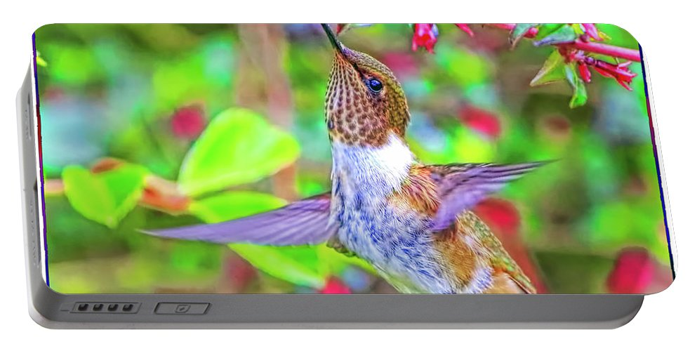Hummingbird Portable Battery Charger featuring the photograph Chupaflor by Edita De Lima