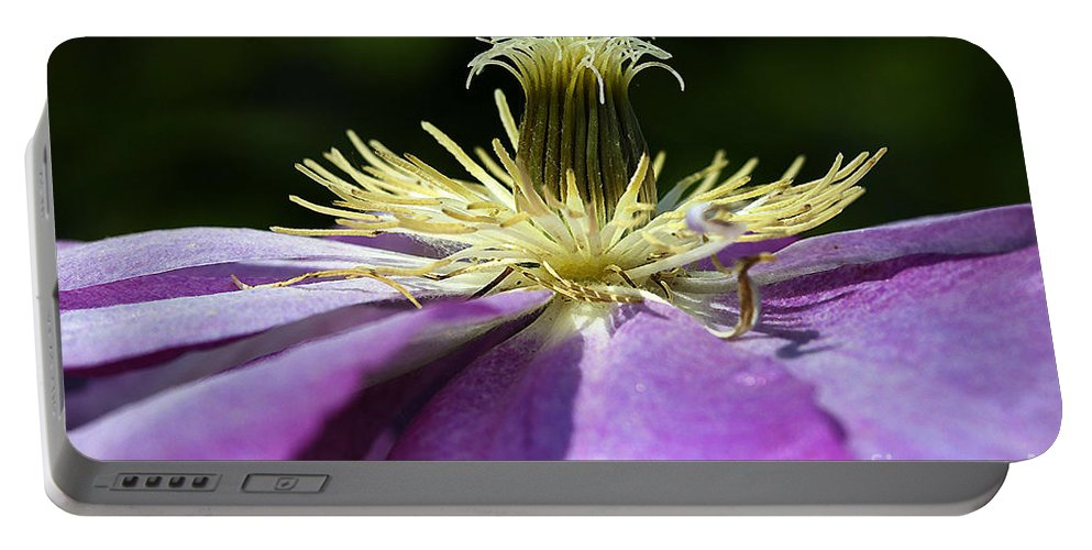 Flower Portable Battery Charger featuring the photograph Clementas by Deborah Benoit