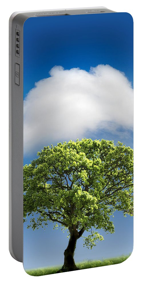 Tree Portable Battery Charger featuring the photograph Cloud Cover by Mal Bray