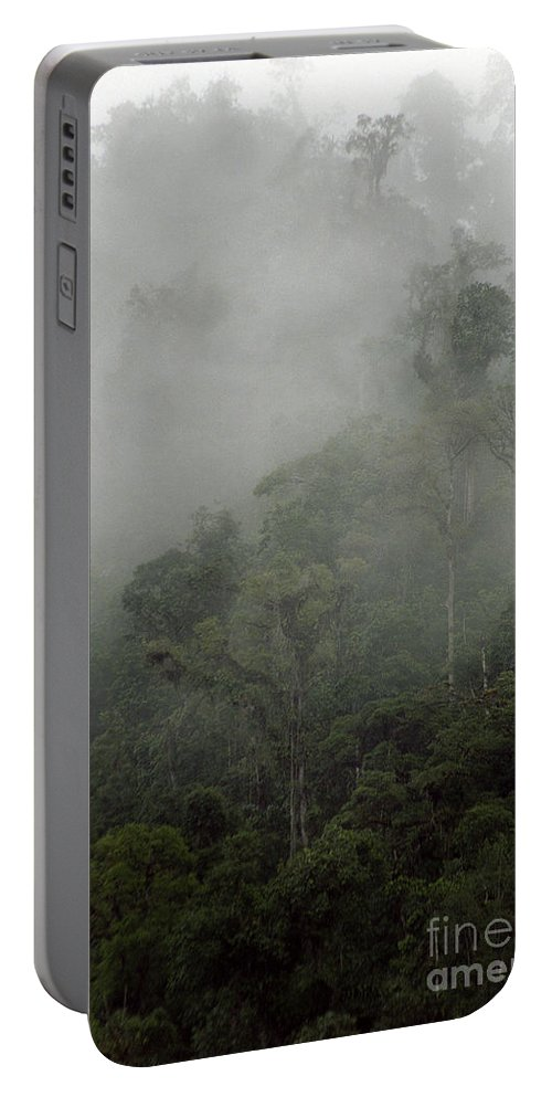 Rainforest Portable Battery Charger featuring the photograph Cloud Forest by Kathy McClure