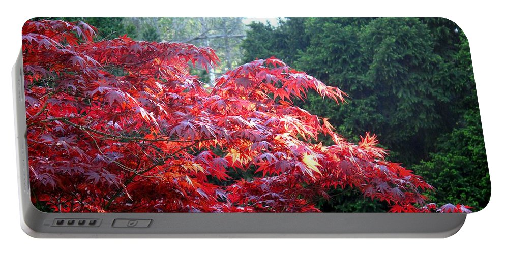 James Gardens Portable Battery Charger featuring the photograph Clouds Of Leaves by Ian MacDonald