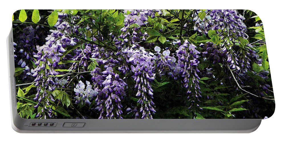 Wisteria Portable Battery Charger featuring the photograph Clusters Of Wisteria by Susan Savad