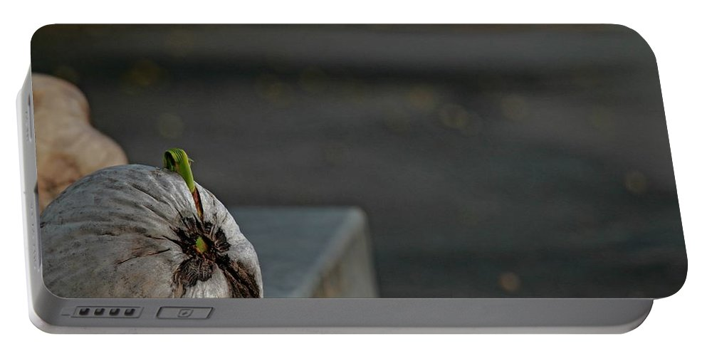 Coconut Portable Battery Charger featuring the photograph Coconut Cover by Donald Hazlett