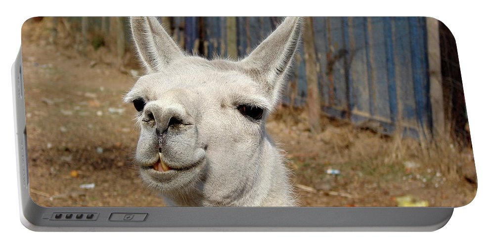 Colchagua Portable Battery Charger featuring the photograph Colchagua Valley Lama by Brett Winn
