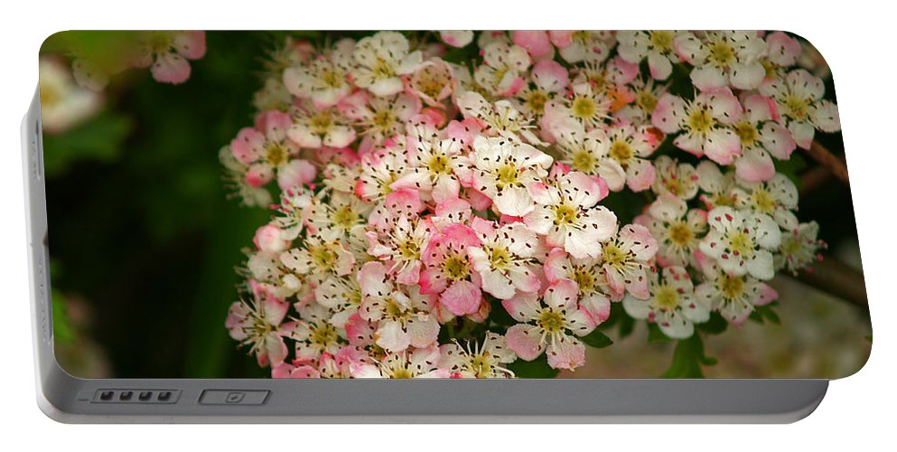 Fine Art Photography Portable Battery Charger featuring the photograph Colleen by Patricia Griffin Brett