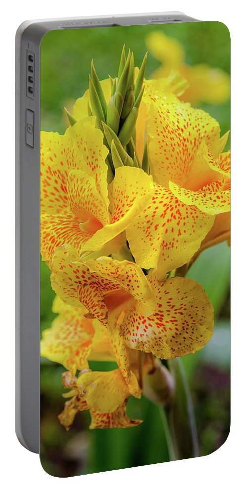 Colombia Portable Battery Charger featuring the photograph Colombian Flower by Michael Weber