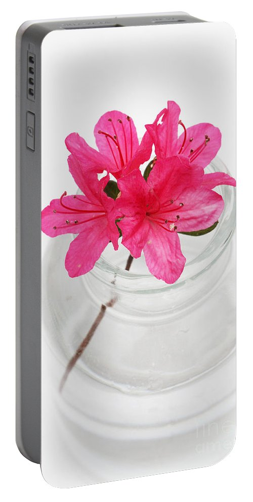 Azalea Portable Battery Charger featuring the photograph Color Full Of Life by Amanda Barcon