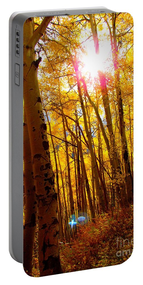 Diane Dittus Portable Battery Charger featuring the photograph Colorado Aspen Gold 3 by Diane M Dittus