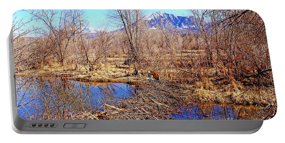 Winter Portable Battery Charger featuring the digital art Colorado Beaver Ecosystem by Dale E Jackson