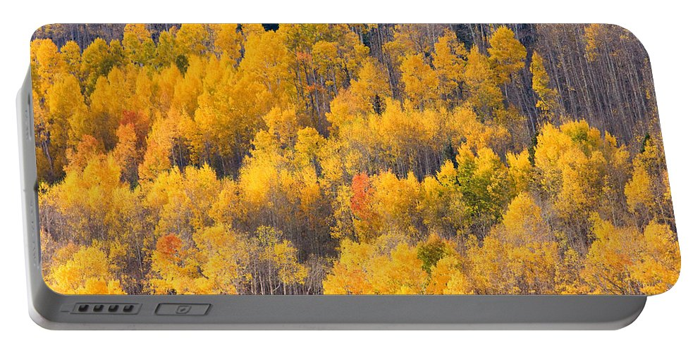 Trees Portable Battery Charger featuring the photograph Colorado High Country Autumn Colors by James BO Insogna