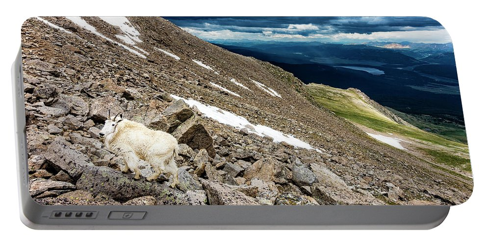 Animals Portable Battery Charger featuring the photograph Colorado Mountain Goat by Bryan Toro