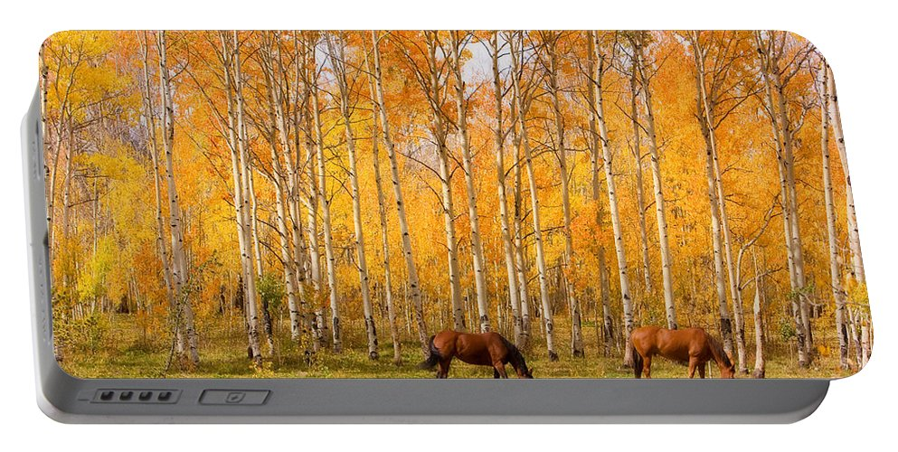 Country Portable Battery Charger featuring the photograph Colorful Autumn High Country Landscape by James BO Insogna