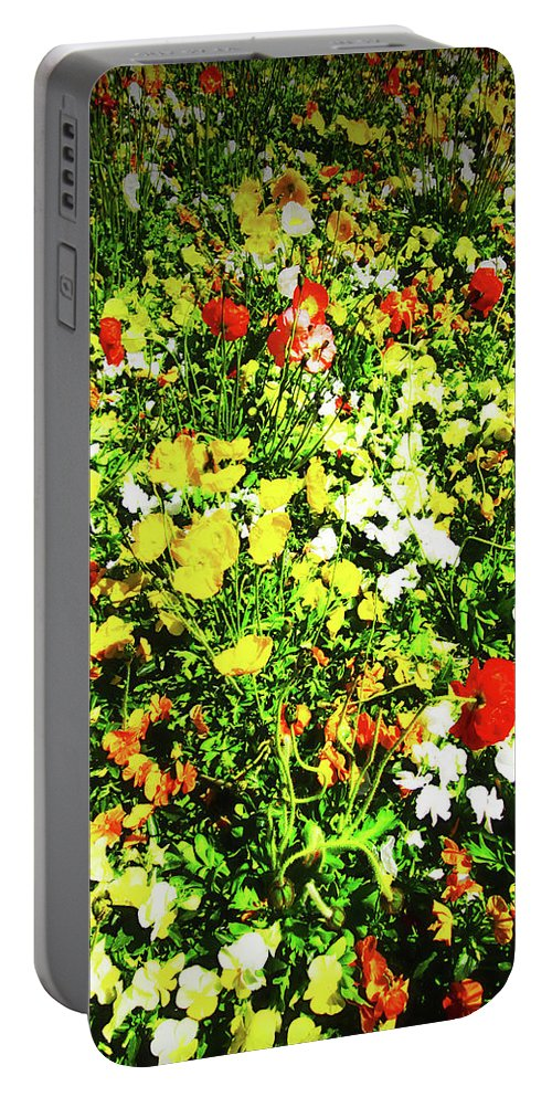 Flowers Portable Battery Charger featuring the photograph Colorful by Douglas Barnard