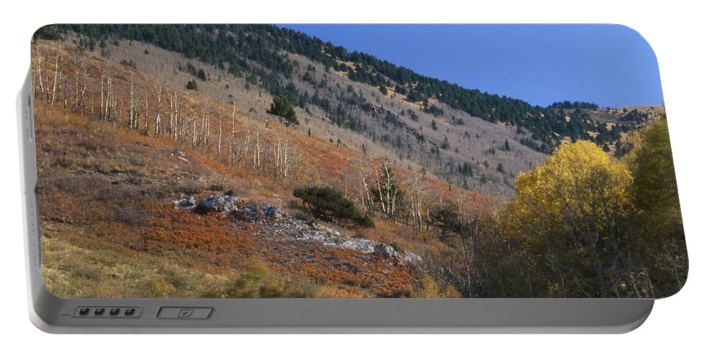 Orient Canyon Portable Battery Charger featuring the photograph Colorful Orient Canyon - Rio Grande National Forest by Soli Deo Gloria Wilderness And Wildlife Photography