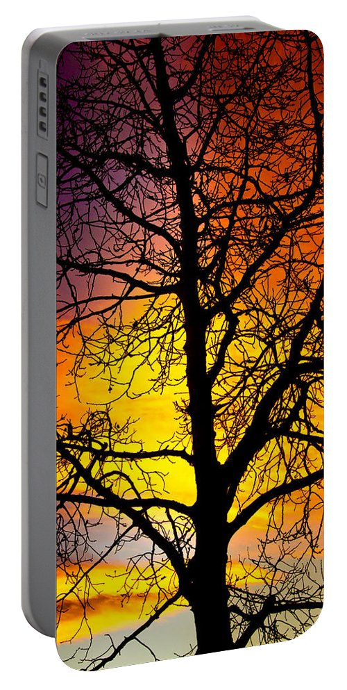 Silhouette Portable Battery Charger featuring the photograph Colorful Silhouette by James BO Insogna
