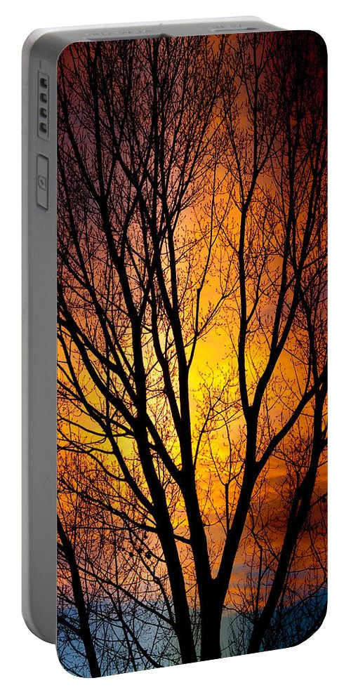 Vertical Portable Battery Charger featuring the photograph Colorful Tree Silhouettes by James BO Insogna