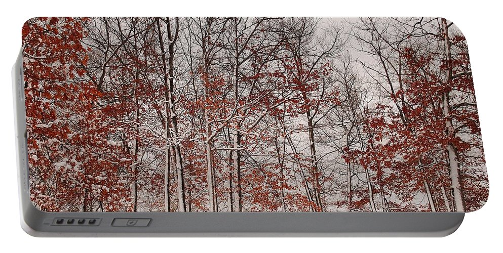 Winter Portable Battery Charger featuring the photograph Colorful Winters Day by Frozen in Time Fine Art Photography