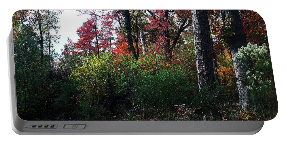 Forest. Fall Colors Portable Battery Charger featuring the photograph Colors Of The Forest by Glenn Smith