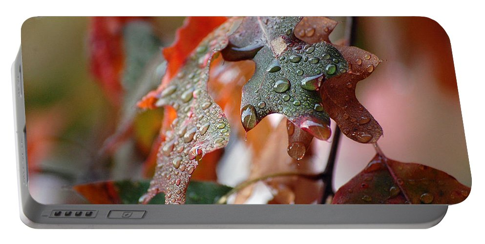 Oak Leaf Portable Battery Charger featuring the photograph Colours Of Fall I by Robert Meanor