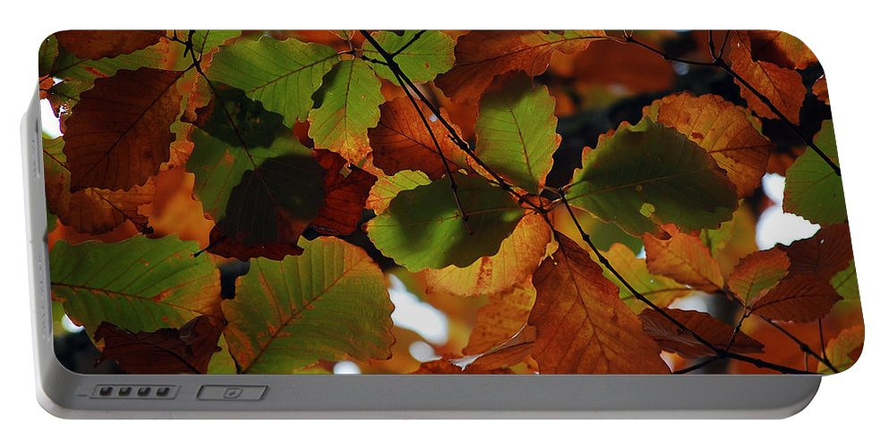 Colour Portable Battery Charger featuring the photograph Colours Of Fall II by Robert Meanor