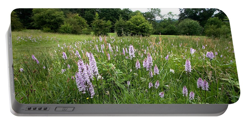 Orchid Portable Battery Charger featuring the photograph Common Spotted Orchids by Bob Kemp
