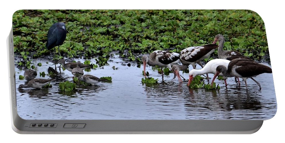 Hendry Portable Battery Charger featuring the photograph Community Pond by Doug Van den Bergh