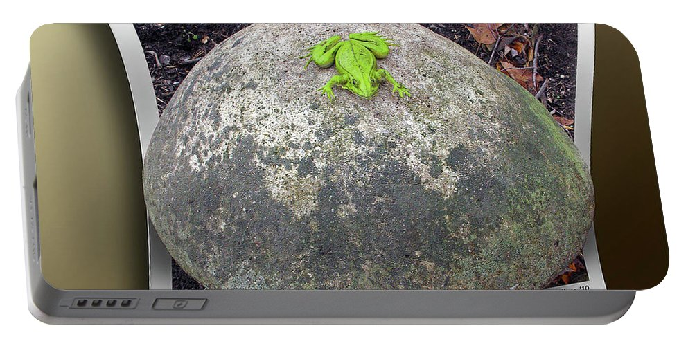2d Portable Battery Charger featuring the photograph Concrete Toad Stool by Brian Wallace