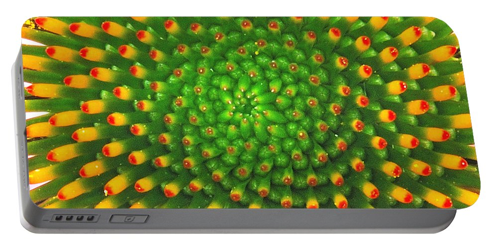 Flower Portable Battery Charger featuring the photograph Cone Flower by Michael Peychich