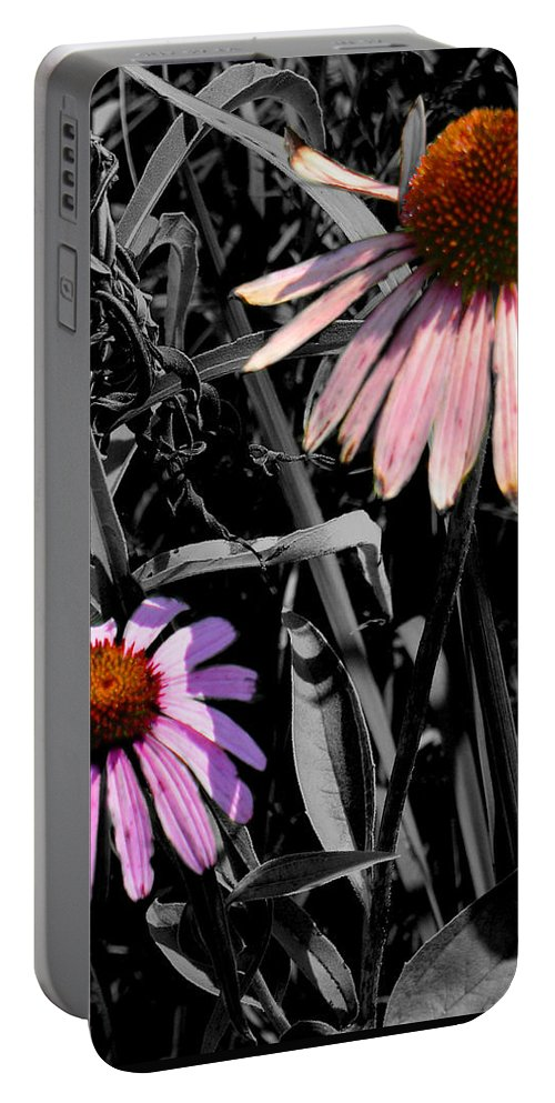 Purple Cone Flower Portable Battery Charger featuring the photograph Cone Flower Tapestry by Steve Karol