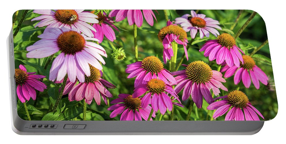 Echinacea Portable Battery Charger featuring the photograph Coneflower Garden by Eleanor Abramson