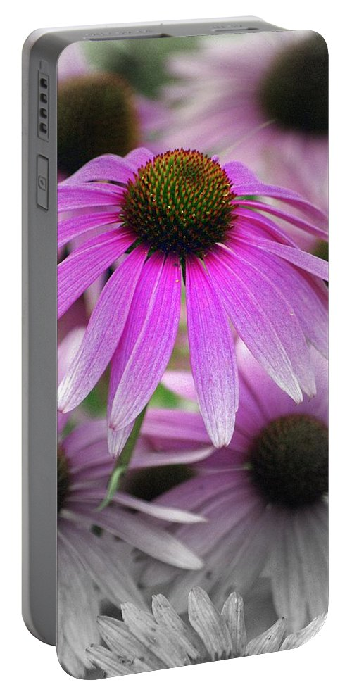 Flowers Portable Battery Charger featuring the photograph Coneflowers by Marty Koch