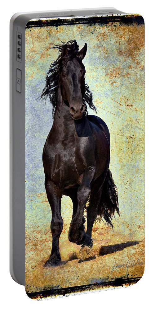 Portable Battery Charger featuring the photograph Conqueror by Jean Hildebrant