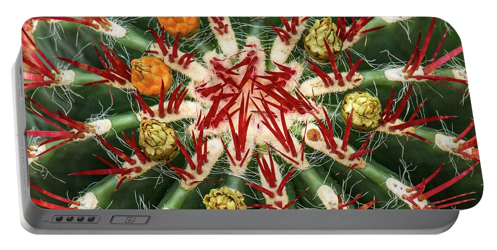 Cactus Portable Battery Charger featuring the photograph Constellation by Tom and Pat Cory