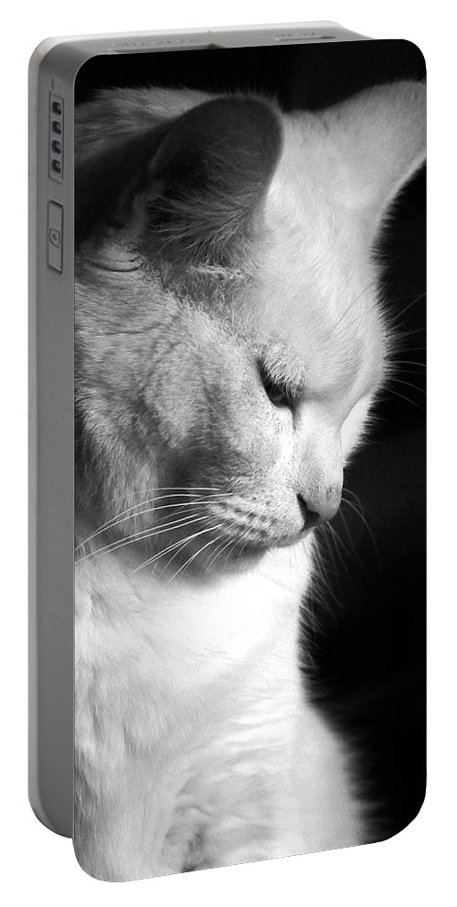 Nature Portable Battery Charger featuring the photograph Contempation by Bob Orsillo