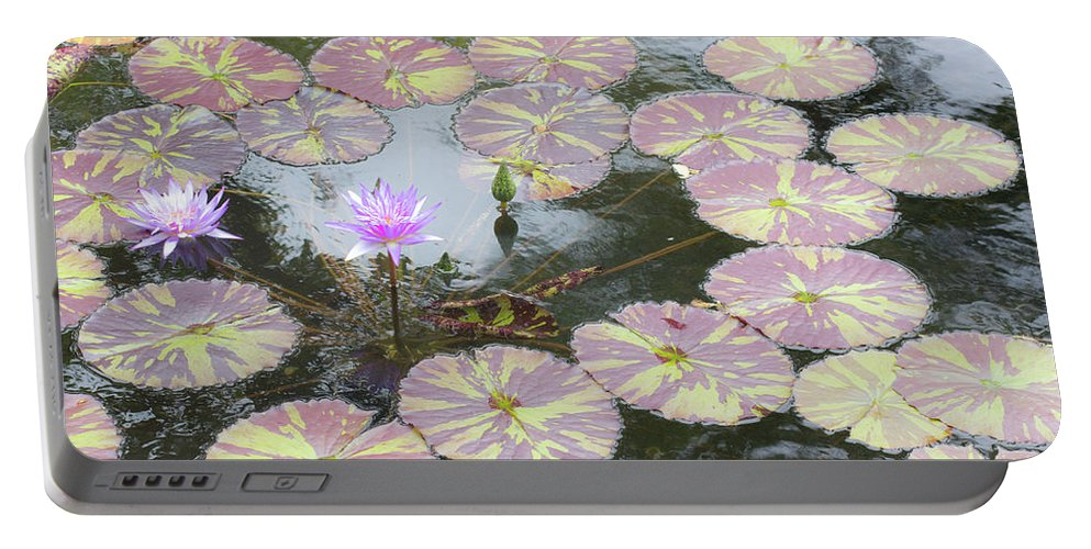 Pond Portable Battery Charger featuring the photograph Contemplation by Kris Hiemstra