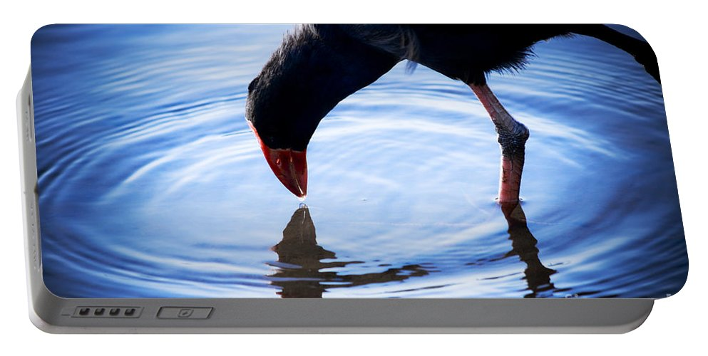 Wildlife Portable Battery Charger featuring the photograph Coot Pond Droplet by Jorgo Photography - Wall Art Gallery