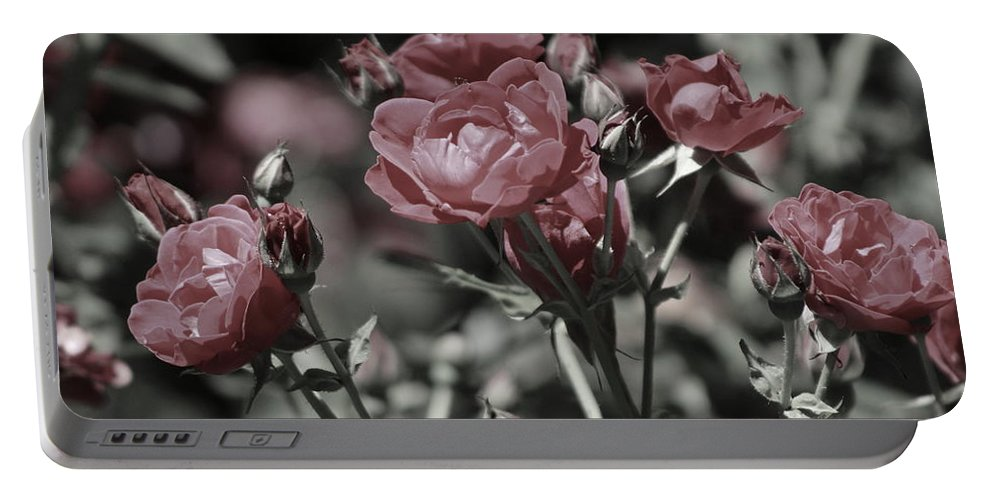 Copper Pink Rose Portable Battery Charger featuring the photograph Copper Rouge Rose in Almost Black and White by Colleen Cornelius