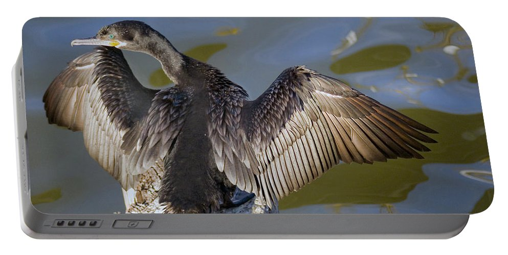 Neotropic Cormorant Portable Battery Charger featuring the photograph Cormorant looking back by Robert Brown