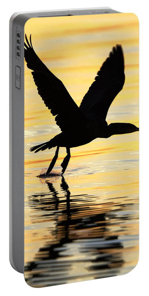 Cormorant Portable Battery Charger featuring the photograph Cormorant Silhouette by Janet Fikar