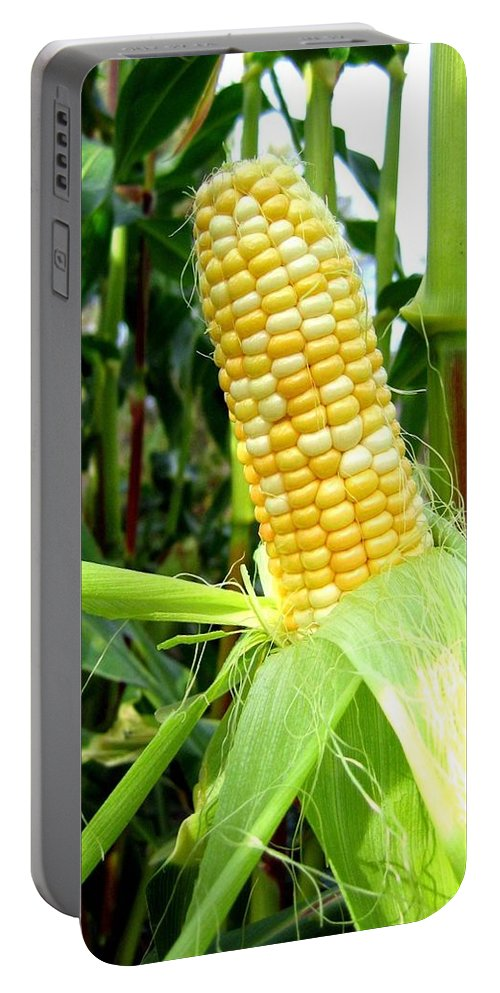 Corn Portable Battery Charger featuring the photograph Corn On The Cob by Will Borden