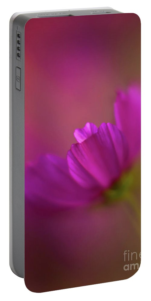 Cosmo Portable Battery Charger featuring the photograph Cosmos Dreamy by Mike Reid