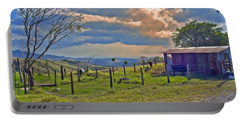 Cow Portable Battery Charger featuring the photograph Costa Rica Cow Farm by Madeline Ellis