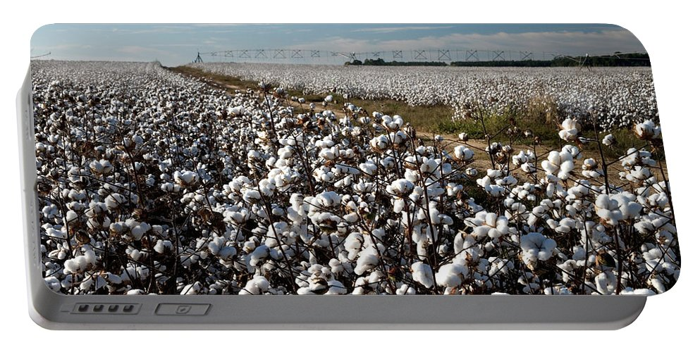 Cotton Portable Battery Charger featuring the photograph Cotton Field by Inga Spence
