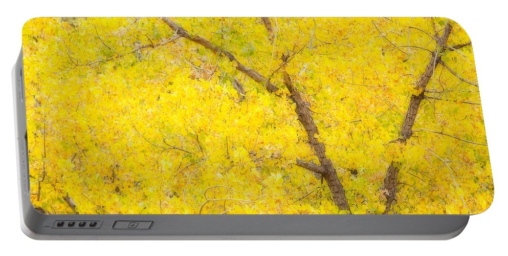 Trees Portable Battery Charger featuring the photograph Cottonwood Colors by James BO Insogna