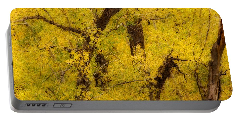 Autumn Portable Battery Charger featuring the photograph Cottonwood Fall Foliage Colors Abstract by James BO Insogna