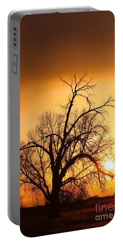 Sunrise Portable Battery Charger featuring the photograph Cottonwood Sunrise - Vertical Print by James BO Insogna