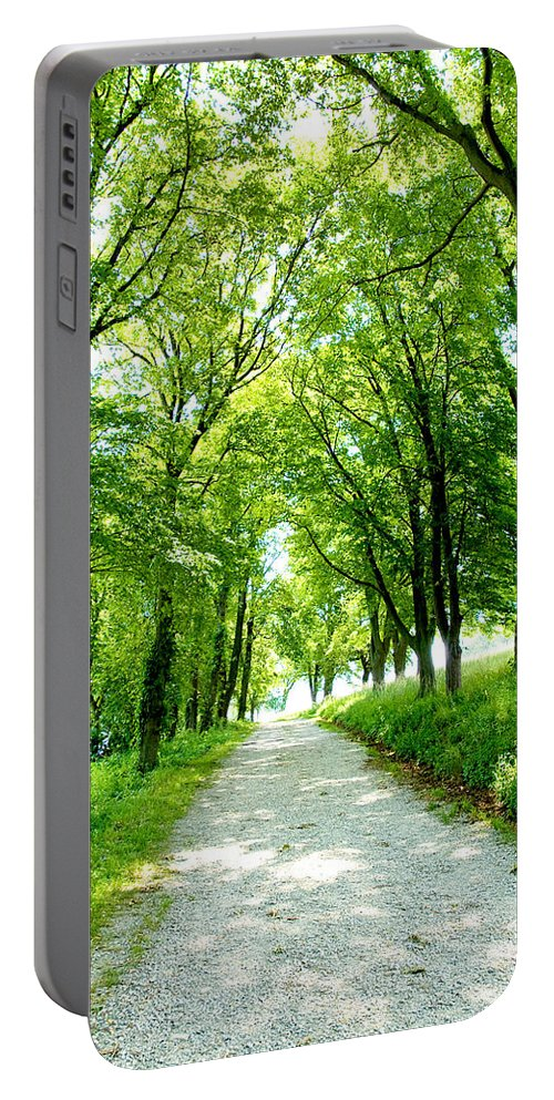 Worlds End Portable Battery Charger featuring the photograph Country Lane by Greg Fortier