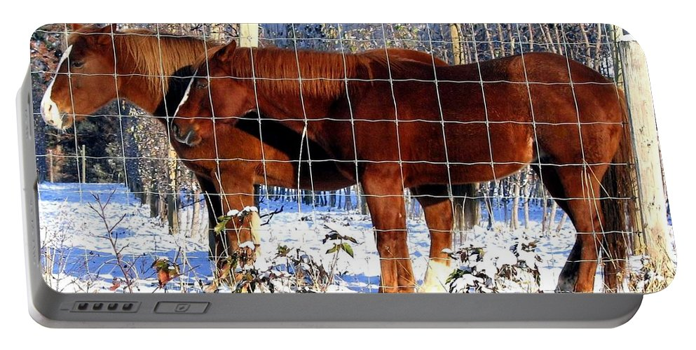 Horses Portable Battery Charger featuring the photograph Country Pals by Will Borden