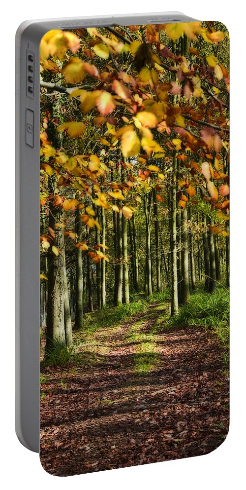 Country Road Portable Battery Charger featuring the photograph Country Road by Svetlana Sewell